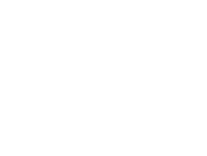 Walking Brands Logo